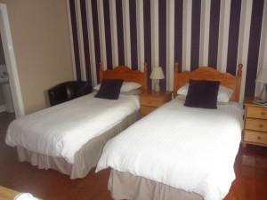 Dergfield House - Twin room